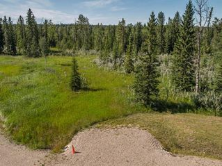 Photo 14: 20 34364 RANGE ROAD 42: Rural Mountain View County Land for sale : MLS®# A1017805