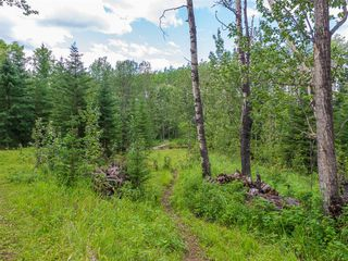 Photo 33: 33224 Range Road 61 Other: Rural Mountain View County Land for sale : MLS®# A1021849