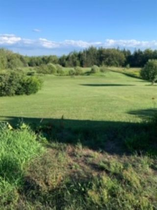 Photo 5: 1920 Brow of Mountain Road in Viewmount: 404-Kings County Vacant Land for sale (Annapolis Valley)  : MLS®# 202018212