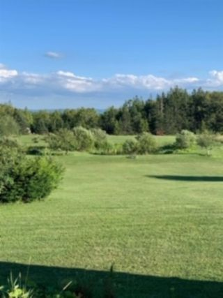 Photo 3: 1920 Brow of Mountain Road in Viewmount: 404-Kings County Vacant Land for sale (Annapolis Valley)  : MLS®# 202018212