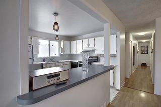 Photo 14: 8416 Centre Street NE in Calgary: Beddington Heights Semi Detached for sale : MLS®# A1044335