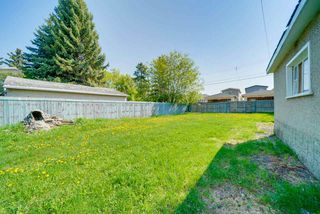 Photo 29: 10221 162 Street in Edmonton: Zone 21 House for sale : MLS®# E4169884