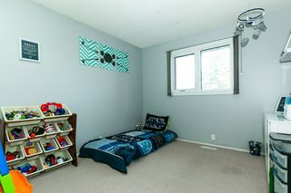 Photo 12: 4 HARROW Circle in Edmonton: Zone 35 House for sale : MLS®# E4178118