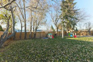 Photo 29: 4 HARROW Circle in Edmonton: Zone 35 House for sale : MLS®# E4178118