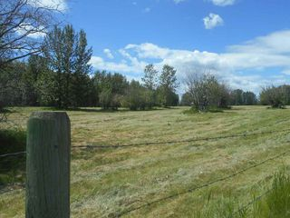 Photo 14: 49112 Range Road 73: Rural Brazeau County Rural Land/Vacant Lot for sale : MLS®# E4203144