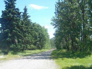 Photo 6: 49112 Range Road 73: Rural Brazeau County Rural Land/Vacant Lot for sale : MLS®# E4203144