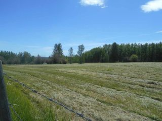 Photo 15: 49112 Range Road 73: Rural Brazeau County Rural Land/Vacant Lot for sale : MLS®# E4203144