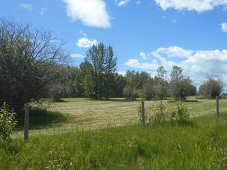 Photo 12: 49112 Range Road 73: Rural Brazeau County Rural Land/Vacant Lot for sale : MLS®# E4203144