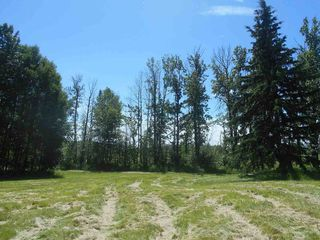 Photo 10: 49112 Range Road 73: Rural Brazeau County Rural Land/Vacant Lot for sale : MLS®# E4203144