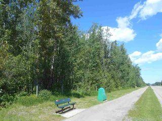 Photo 2: 49112 Range Road 73: Rural Brazeau County Rural Land/Vacant Lot for sale : MLS®# E4203144