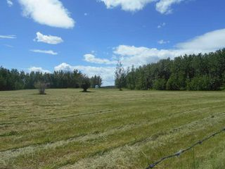 Photo 16: 49112 Range Road 73: Rural Brazeau County Rural Land/Vacant Lot for sale : MLS®# E4203144