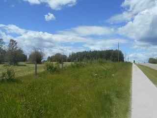 Photo 13: 49112 Range Road 73: Rural Brazeau County Rural Land/Vacant Lot for sale : MLS®# E4203144