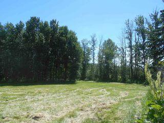 Photo 9: 49112 Range Road 73: Rural Brazeau County Rural Land/Vacant Lot for sale : MLS®# E4203144