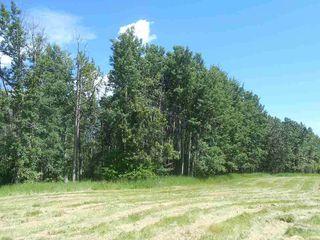 Photo 11: 49112 Range Road 73: Rural Brazeau County Rural Land/Vacant Lot for sale : MLS®# E4203144