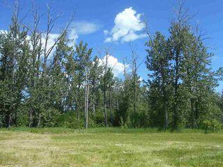 Photo 5: 49112 Range Road 73: Rural Brazeau County Rural Land/Vacant Lot for sale : MLS®# E4203144