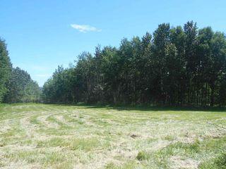 Photo 8: 49112 Range Road 73: Rural Brazeau County Rural Land/Vacant Lot for sale : MLS®# E4203144