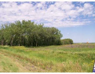 Photo 3: 1093 SHINDEL Road in ST ADOLPHE: Glenlea / Ste. Agathe / St. Adolphe / Grande Pointe / Ile des Chenes / Vermette / Niverville Vacant Land for sale (Winnipeg area)  : MLS®# 2712962