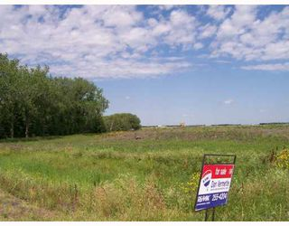 Photo 2: 1093 SHINDEL Road in ST ADOLPHE: Glenlea / Ste. Agathe / St. Adolphe / Grande Pointe / Ile des Chenes / Vermette / Niverville Vacant Land for sale (Winnipeg area)  : MLS®# 2712962
