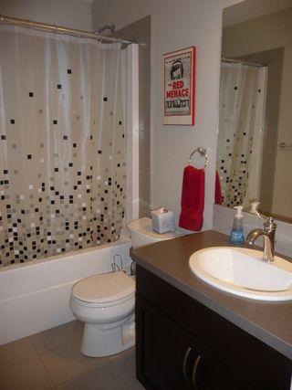 Photo 19: 745 DECOTEAU Way in Edmonton: Zone 27 House for sale : MLS®# E4173111