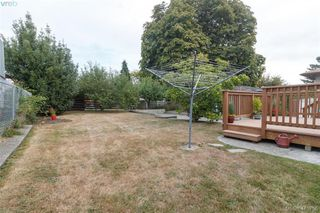 Photo 19: 260 Regina Ave in VICTORIA: SW Tillicum Single Family Detached for sale (Saanich West)  : MLS®# 824726