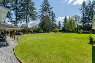 Photo 19: 24082 55 Avenue in Langley: Salmon River House for sale : MLS®# R2411106