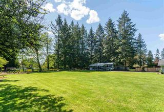 Photo 16: 24082 55 Avenue in Langley: Salmon River House for sale : MLS®# R2411106