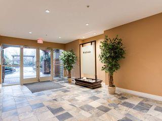 Photo 14: 108 12020 207A STREET in Maple Ridge: Northwest Maple Ridge Condo for sale : MLS®# R2425243