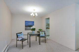 "Photo 6: 103 10180 RYAN Road in Richmond: South Arm Condo for sale in ""Stornoway"" : MLS®# R2476988"