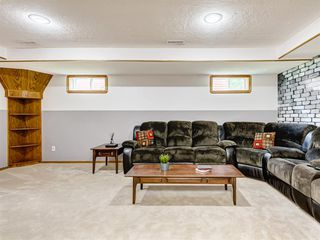 Photo 28: 222 Tanner Drive SE: Airdrie Detached for sale : MLS®# A1019131