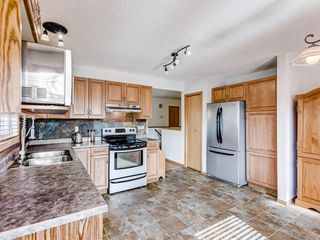 Photo 6: 222 Tanner Drive SE: Airdrie Detached for sale : MLS®# A1019131