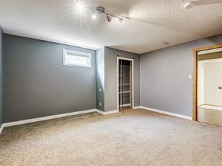 Photo 24: 222 Tanner Drive SE: Airdrie Detached for sale : MLS®# A1019131