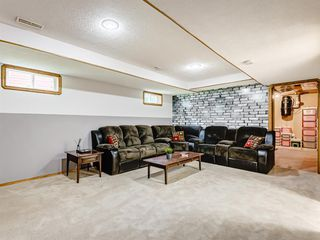 Photo 27: 222 Tanner Drive SE: Airdrie Detached for sale : MLS®# A1019131