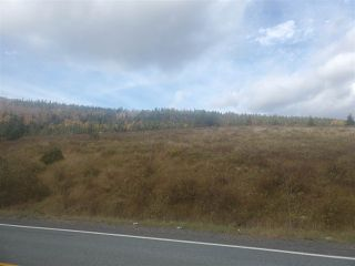 Photo 5: 2520 Eskasoni Road in Northside East Bay: 207-C. B. County Vacant Land for sale (Cape Breton)  : MLS®# 202023733