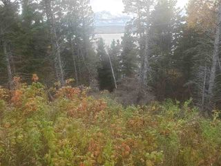 Photo 6: 2520 Eskasoni Road in Northside East Bay: 207-C. B. County Vacant Land for sale (Cape Breton)  : MLS®# 202023733