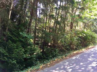 Photo 5: LOT A SKYLINE Drive in Gibsons: Gibsons & Area Land for sale (Sunshine Coast)  : MLS®# R2396072