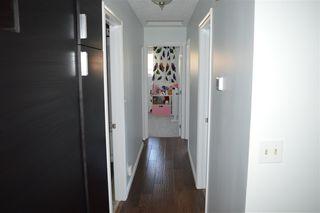Photo 9: 7303 184 Street in Edmonton: Zone 20 House for sale : MLS®# E4169672