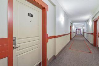 Photo 6: 202 11120 68 Avenue in Edmonton: Zone 15 Condo for sale : MLS®# E4172391