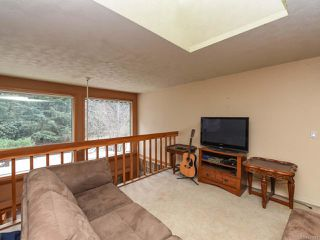 Photo 40: 1505 Croation Rd in CAMPBELL RIVER: CR Campbell River West House for sale (Campbell River)  : MLS®# 831478