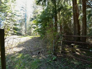Photo 80: 1505 Croation Rd in CAMPBELL RIVER: CR Campbell River West House for sale (Campbell River)  : MLS®# 831478