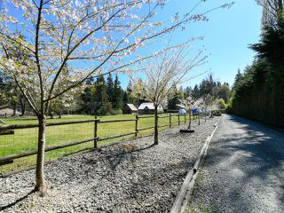 Photo 53: 1505 Croation Rd in CAMPBELL RIVER: CR Campbell River West House for sale (Campbell River)  : MLS®# 831478