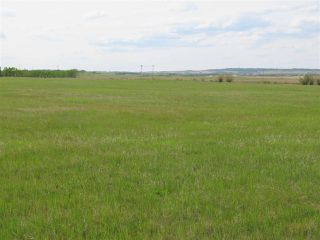 Photo 16: 45063A TWP RD 734 (KLESKUN NORTH): Rural Grande Prairie County House for sale : MLS®# E4190067