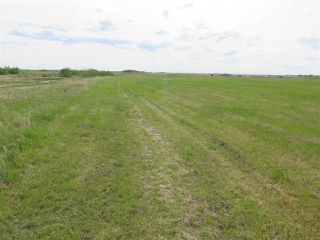 Photo 17: 45063A TWP RD 734 (KLESKUN NORTH): Rural Grande Prairie County House for sale : MLS®# E4190067