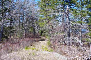 Photo 2: 6166 East Bay Highway in Ben Eoin: 207-C. B. County Vacant Land for sale (Cape Breton)  : MLS®# 202006816