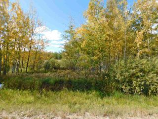 Photo 2: RR 240 betw Twp 580 & Twp 582 (south 1/2): Rural Sturgeon County Rural Land/Vacant Lot for sale : MLS®# E4216489
