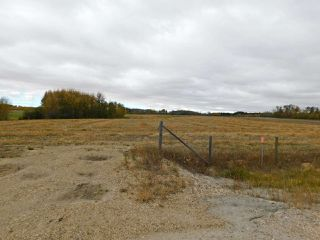 Photo 6: RR 240 betw Twp 580 & Twp 582 (south 1/2): Rural Sturgeon County Rural Land/Vacant Lot for sale : MLS®# E4216489