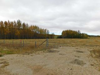 Photo 5: RR 240 betw Twp 580 & Twp 582 (south 1/2): Rural Sturgeon County Rural Land/Vacant Lot for sale : MLS®# E4216489