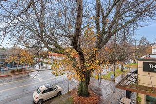 Photo 24: 204 240 Cook St in : Vi Fairfield West Condo for sale (Victoria)  : MLS®# 860364