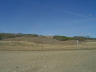 Photo 2: 8006 99 Avenue in Peace River: Commercial Other for sale (Northern Sunnrise)  : MLS®# E1005435