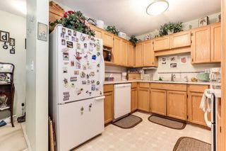 "Photo 10: 303 22275 123 Avenue in Maple Ridge: West Central Condo for sale in ""Mountain View Terrace"" : MLS®# R2389765"