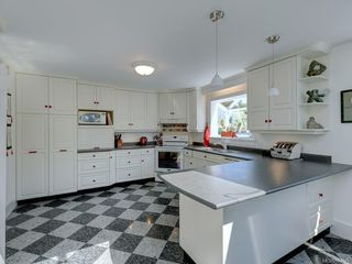 Photo 9: 380 Stannard Ave in Victoria: Vi Fairfield East House for sale : MLS®# 844075